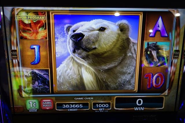 Storm Queens Slot - Win Big Playing Online Casino Games